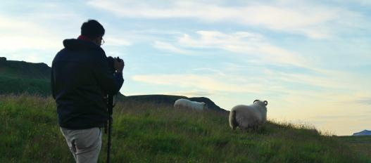 Julian and sheep, Skogafoss