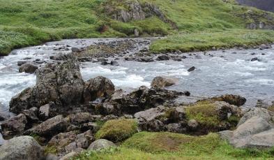 Random waterfall on the way to Akureyri