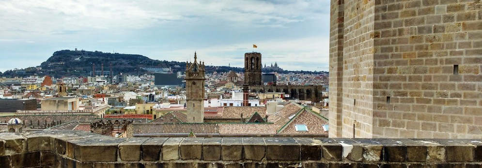 Top of Catedral Barcelona